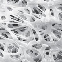 GLA-5000 PVC Membrane Disc Filters